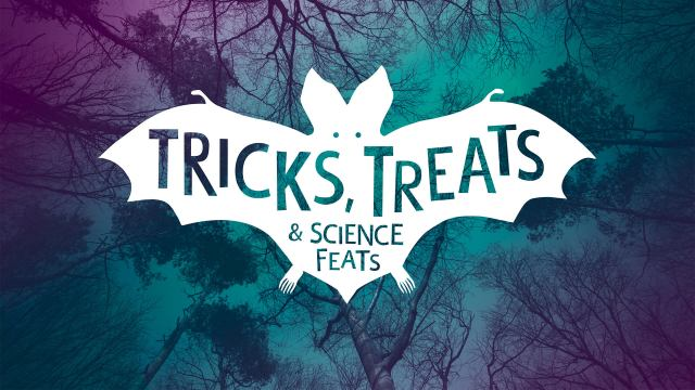 tricks-treats-1920x1080